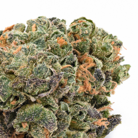 Flor de CBD, Blackberry Kush - Cannactiva