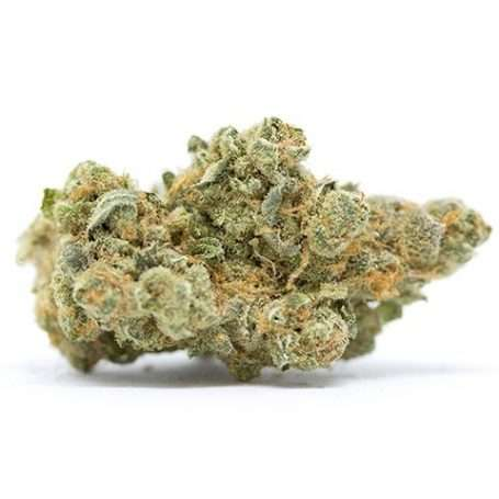Flor de CBD Blue Green (Gelato) - Cannactiva