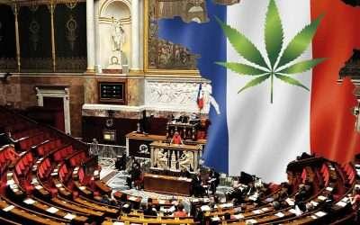 Francia estudia subir el límite legal de THC al 1%.