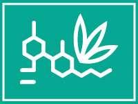 Extractos CBD e ingredientes cáñamo