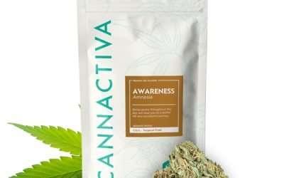 Flores de CBD Cannabis AWARENESS (Amnesia)